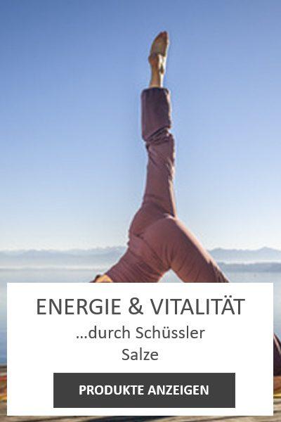 energie und vitalität schüssler salze